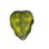 Glass Bead Leaves 10x8mm Green Aurora Borealis/Matt - Strung